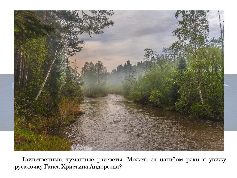 Evgenij-Jurevich-Ionis-portret-sovremennika_page-0020